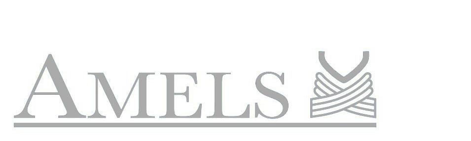 Amels shipyard logo